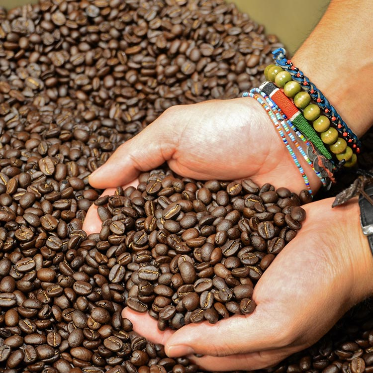 Photo: Trees Organic Coffee