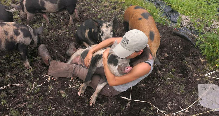Julia Smith with one of her heritage pigs