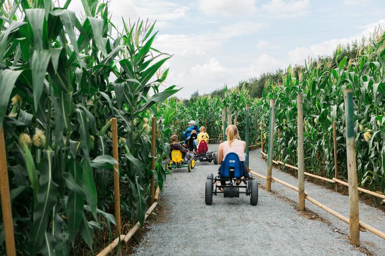 Taves Family Farms