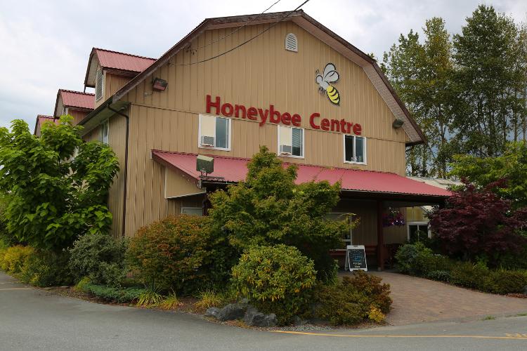 honeycentre-30