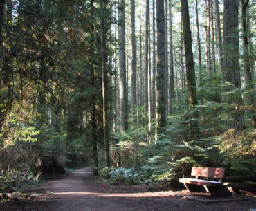 Where to Get Treats for Happy Hiking on Vancouver's North Shore
