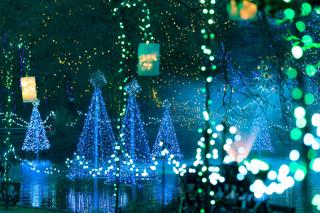 VanDusen Garden Festival of Lights