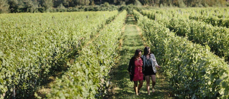 Lulu Winery Richmond on the Local Food Map