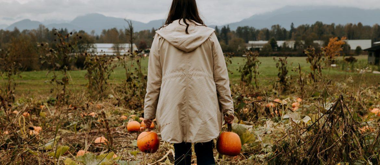 Eagle Acres Pumpkins